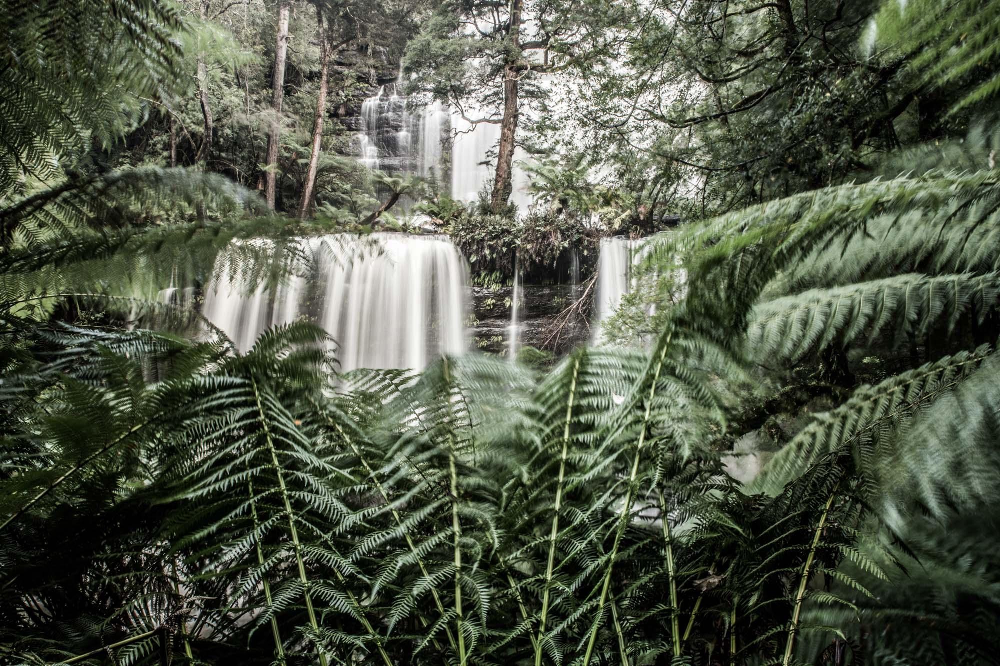 Tasmania-2015-6