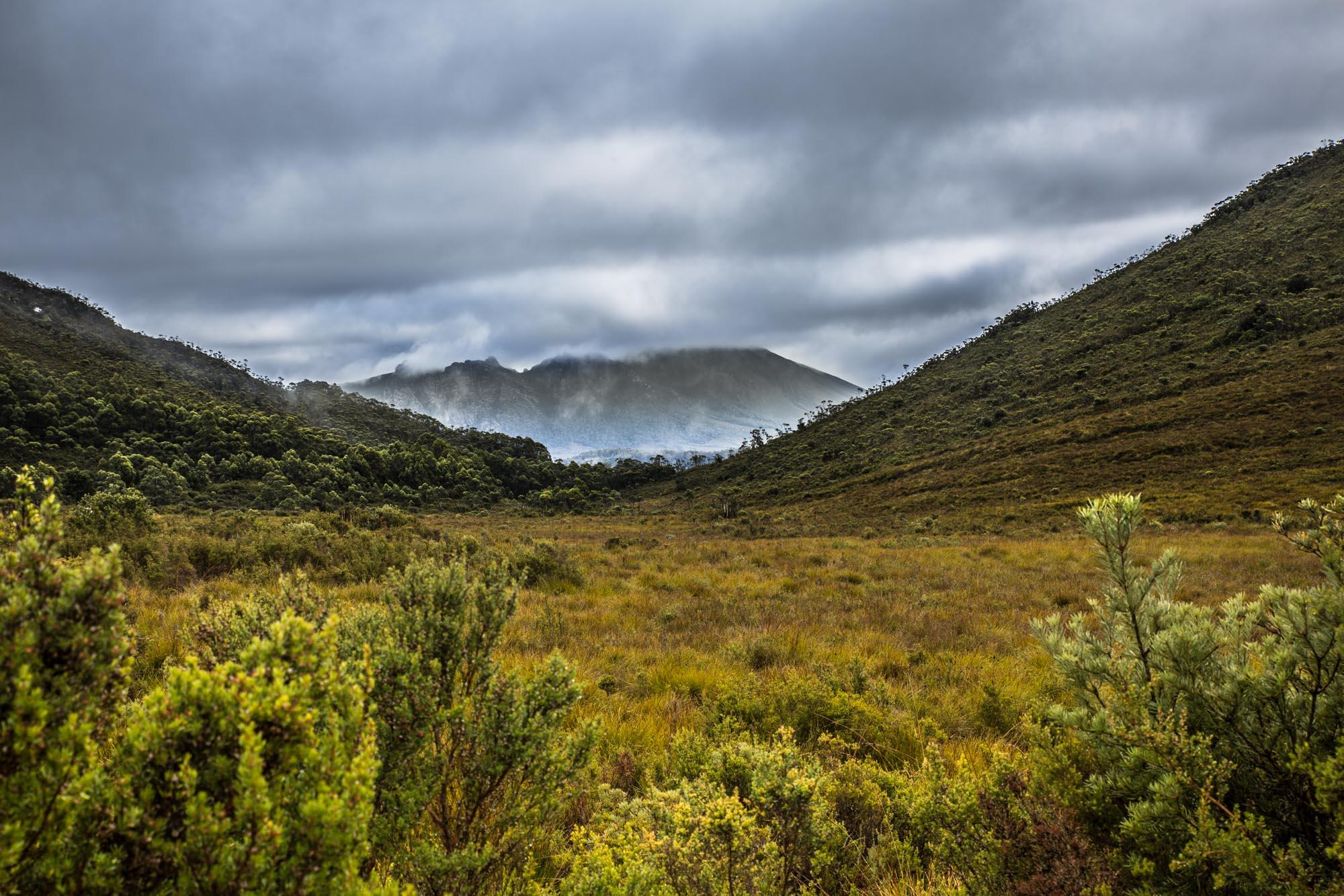 Tasmania-2015-8